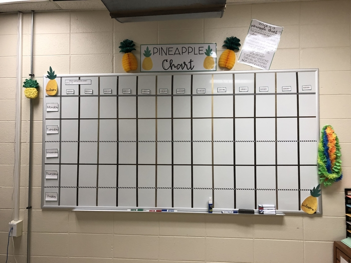 Pineapple Project sign-up chart