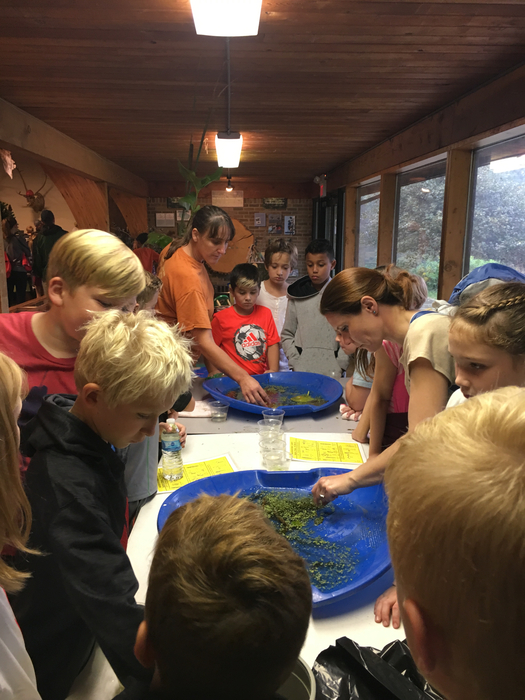 Hands on learning at the nature center!