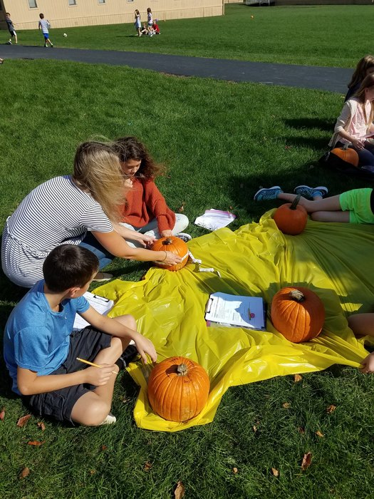 Great Pumpkin Day in 5th Grade!