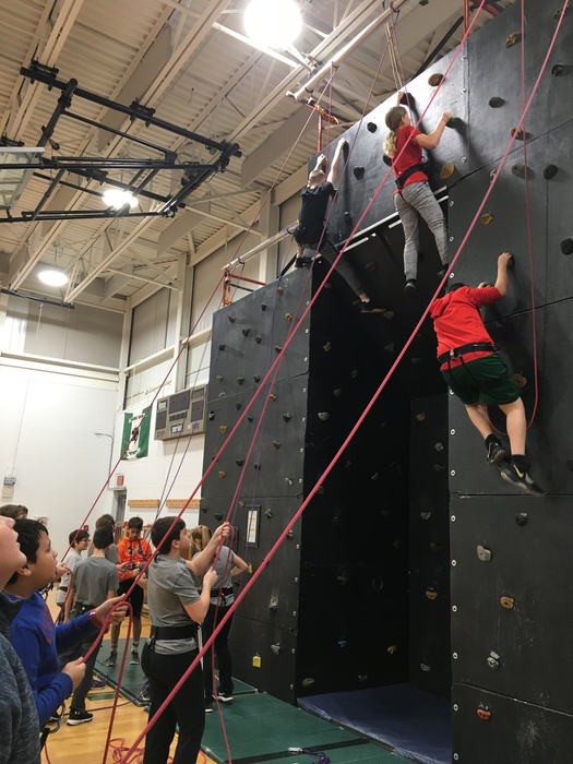 Our Panther PE classes are ROARing up the rock wall this week!
