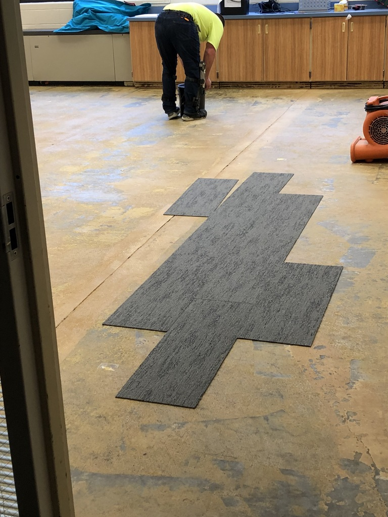 EL carpet replacement