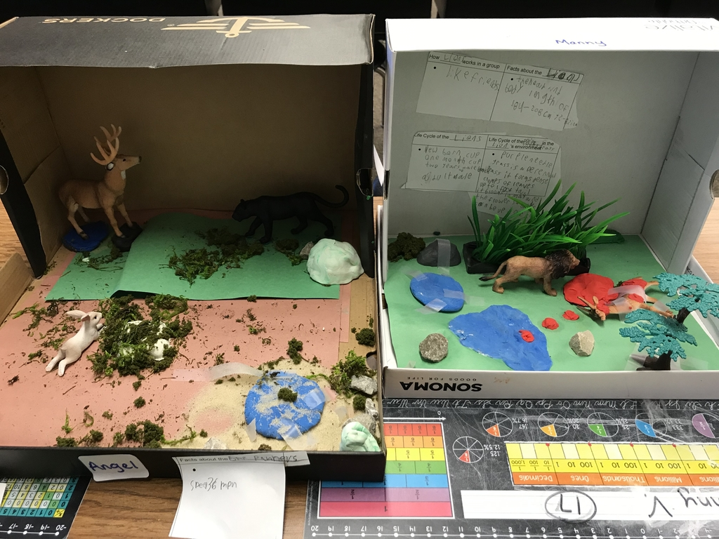 A few of the finished dioramas
