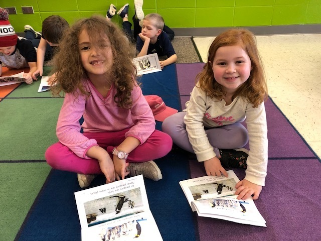 Reading informational text about penguins.